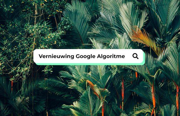 De veranderingen van het Google Algoritme
